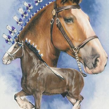 Clydesdale  by BarbBarcikKeith