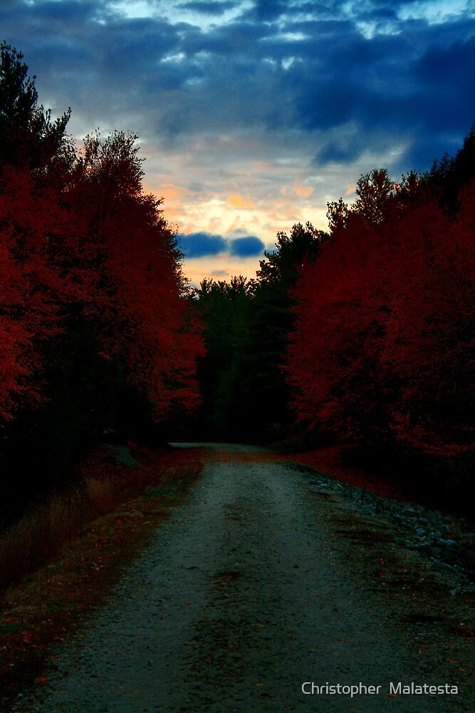 Night Passage by Christopher  Malatesta