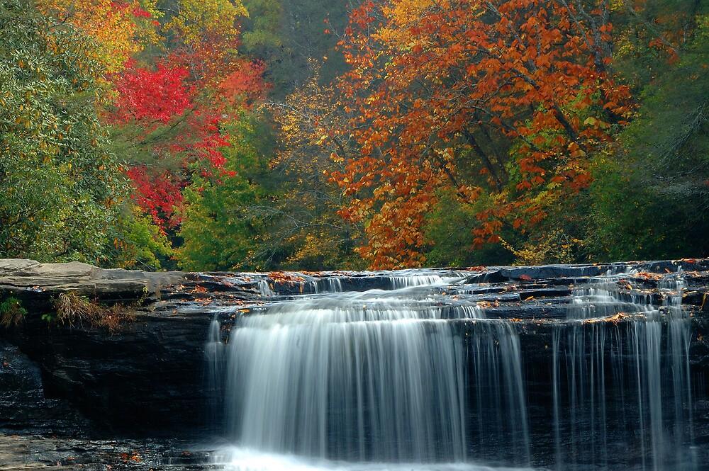 Hooker Falls, South Carolina by fauselr