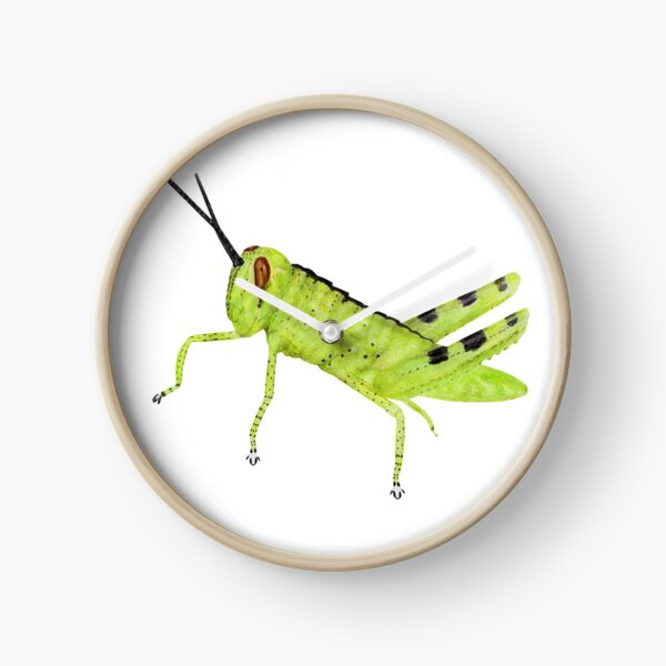 Cricket Clock