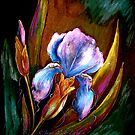 Flowers...Iris by ©Janis Zroback