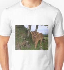 Scottish Highland Cattle Calf 1442 Unisex T-Shirt