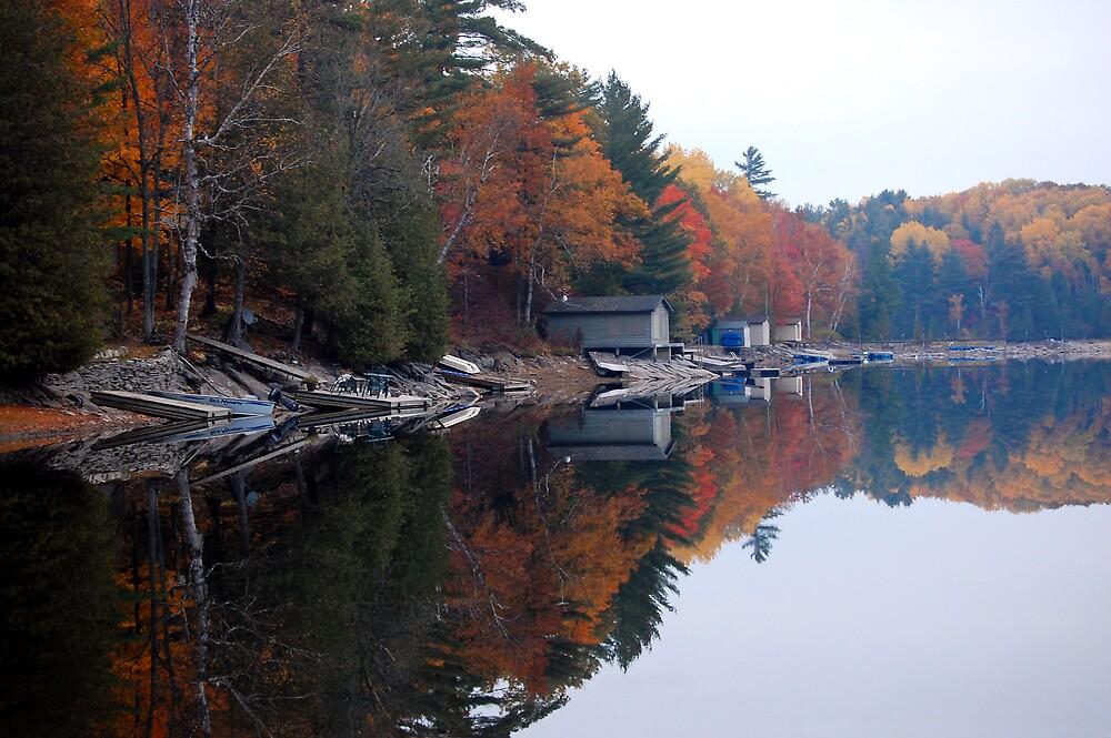 Crystal Lake by Debbie West