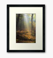 spirit of the forest.... Framed Print
