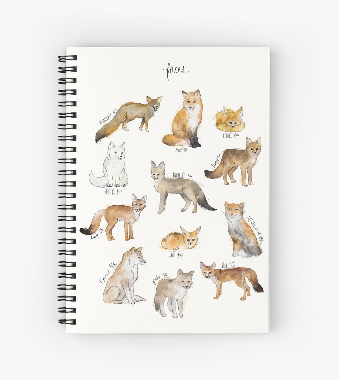 Füchse von Amy Hamilton