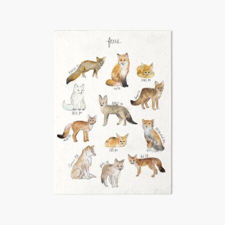 Foxes Art Board Print