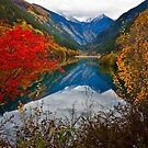 Autumn in Mirror Lake, Jiuzhaigou 秋临九寨沟 by Daniel H Chui