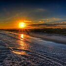 Myrtle Beach State Park Sunset by TJ Baccari Photography