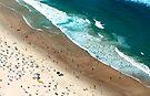 Ants on the Beach by Extraordinary Light