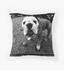 dog with ball Throw Pillow