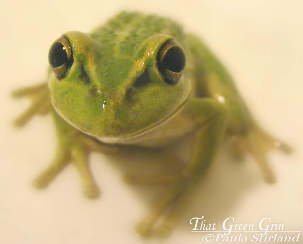 The Green Grin by Gozza