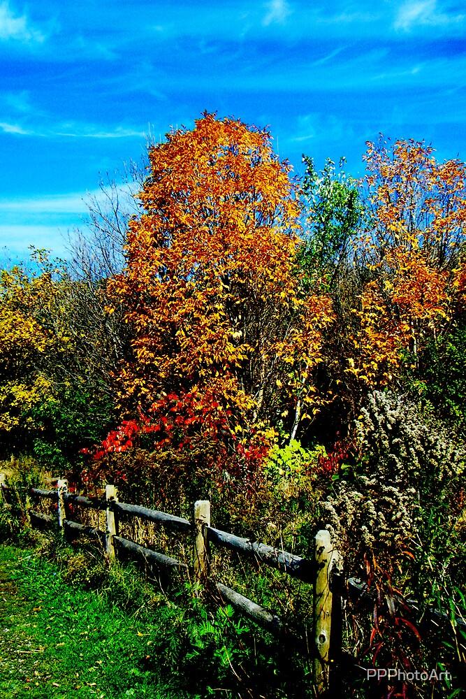 Riverdale Park by PPPhotoArt