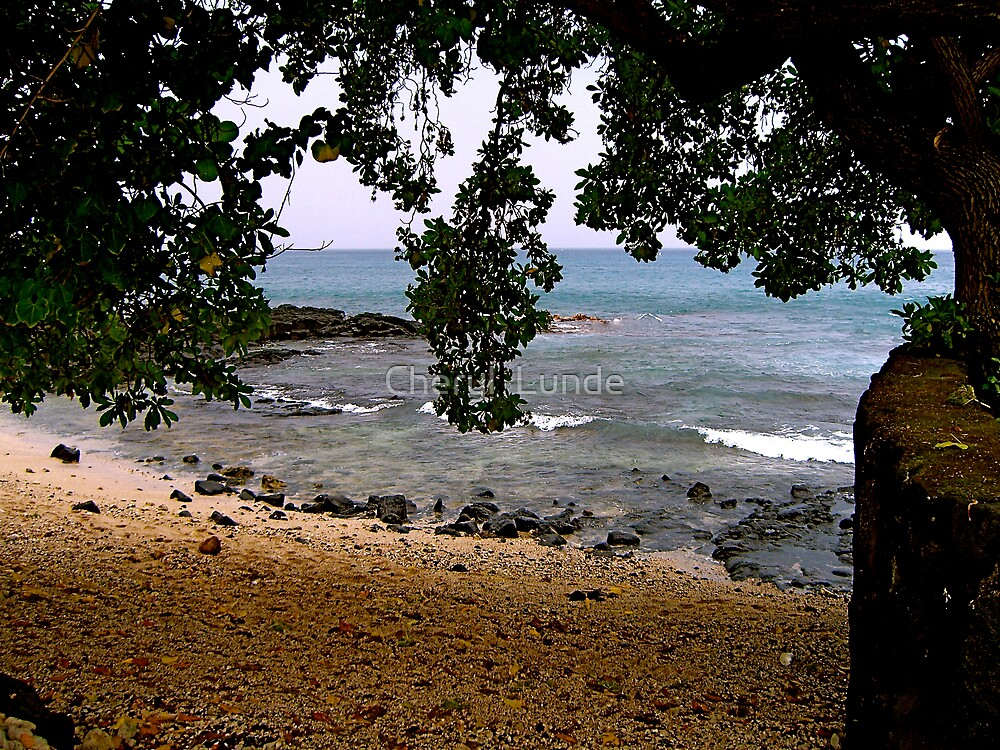 Secluded Beach, Hawaii 2 by Cheryl  Lunde