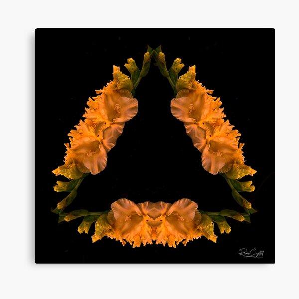 A Happy & Glad Triangle Canvas Print
