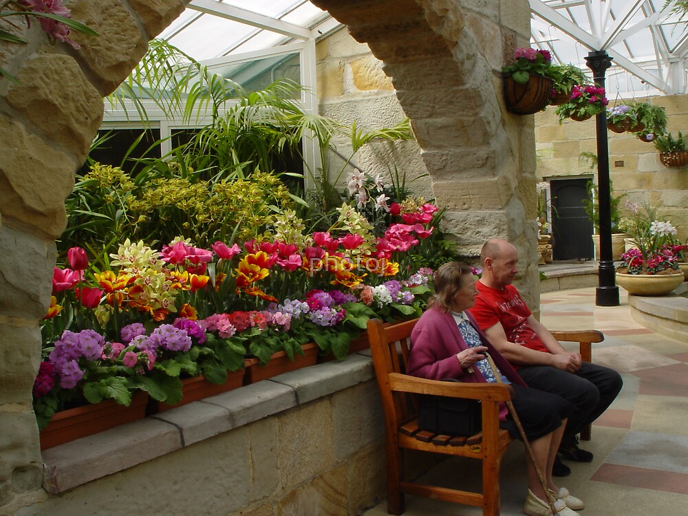 photoj Tas South Hobart Botanical Gardens by photoj