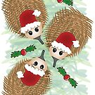 Echidna Christmas by Diana-Lee Saville