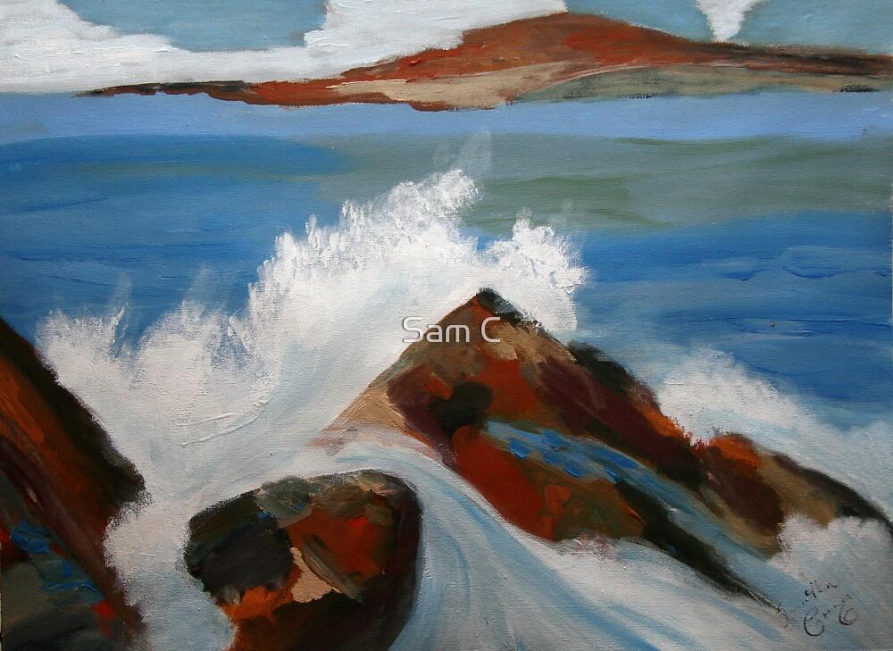 Dancing Waves by Sam C