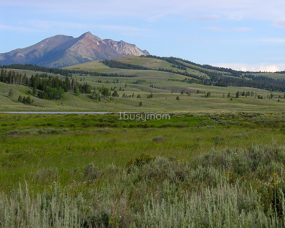 serene pond beside the mountain by 1busymom