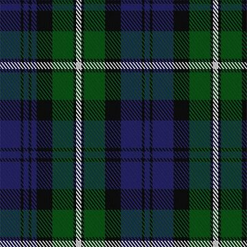 00091 Forbes Clan/Family Tartan  by Detnecs2013