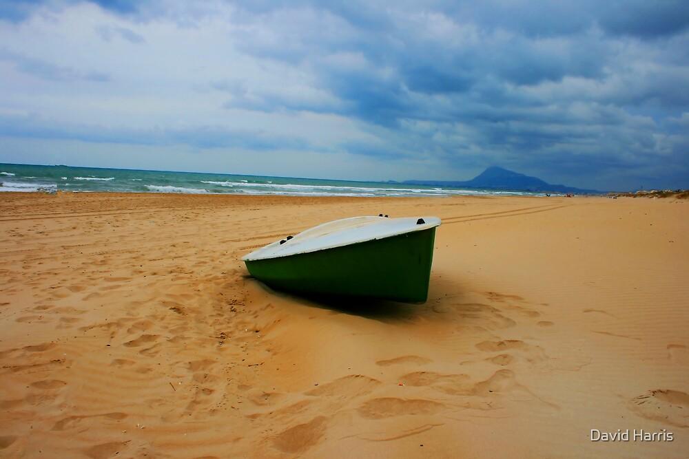 On dry land by David Harris