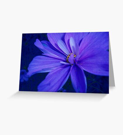 Flower Blues Greeting Card