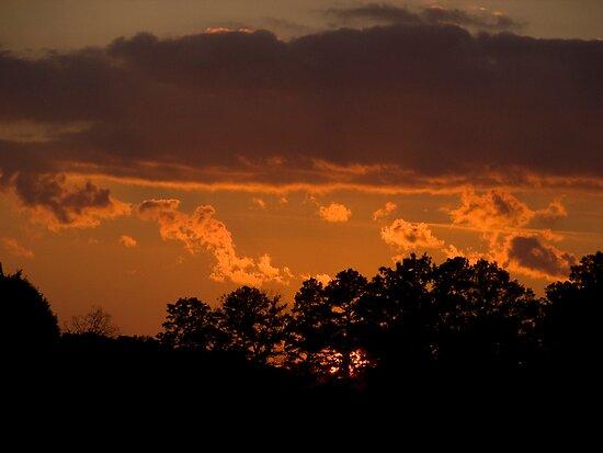 Carnival Sunset by solareclips~Julie  Alexander