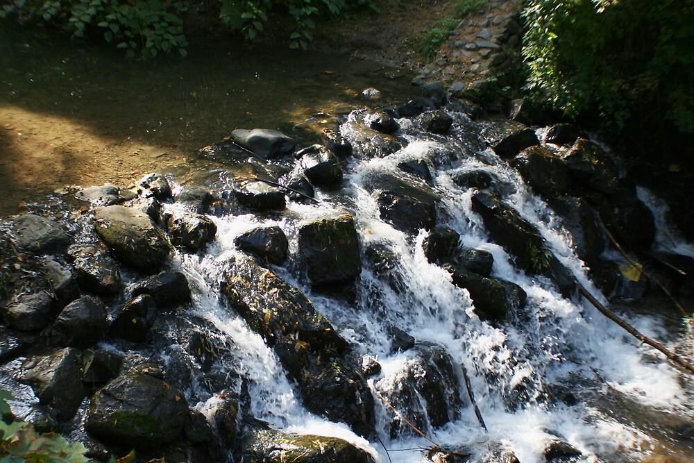 water by kaloyan
