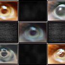 the eye gallery by guy natav