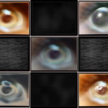 the eye gallery by guynatav