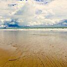 Beach Patterns by Barbara  Brown