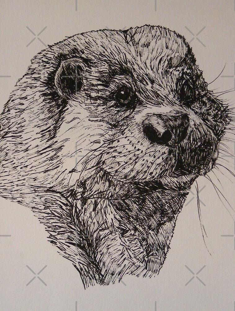 otter by dnlddean