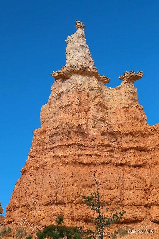 Queen Victoria Rock Formation by Yair Karelic
