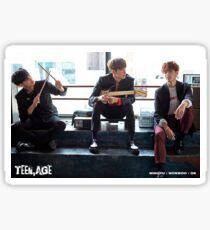 Mingyu wonwoo DK teen age Sticker