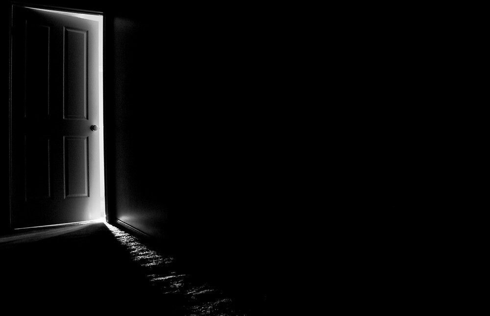 The Door by shushbug