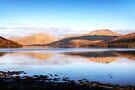 Late Afternoon Light, Loch Fyne, Scotland by Christine Smith