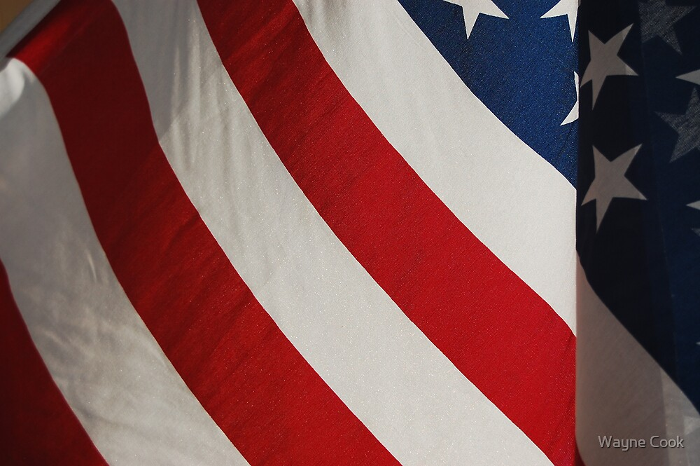 Our Country's flag, backlit by Wayne Cook