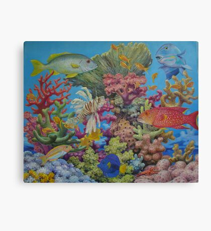 Red Sea Reef Canvas Print