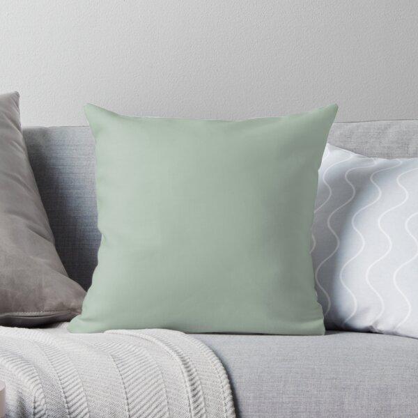 Pastel Light Green Throw Pillow