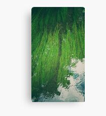 River Green I Canvas Print
