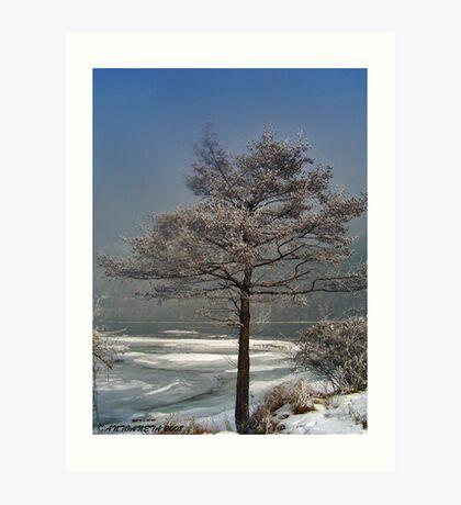 Bulgarian winter Art Print
