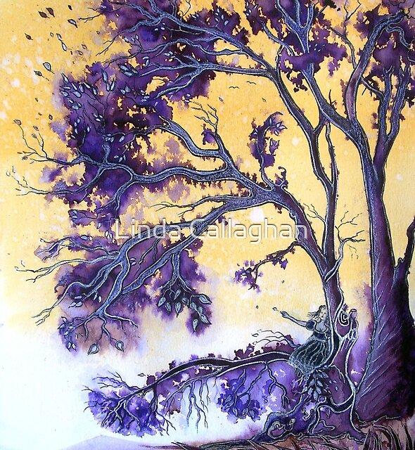 The Wishing Tree  by Linda Callaghan