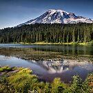 Mt Rainier - Washington by Kathy Weaver