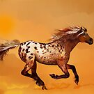 An Appaloosa Called Ginger  by Valerie Anne Kelly