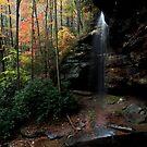 Moore Cove Falls - North Carolina by Kathy Weaver