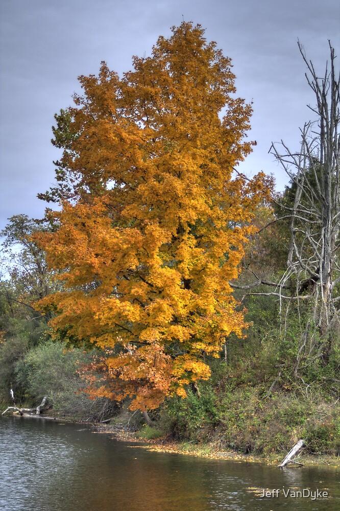Kickapoo State Park - Silt Basin #1 by Jeff VanDyke