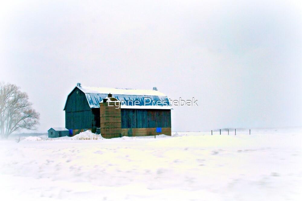 wisconsin winter by Lynne Prestebak