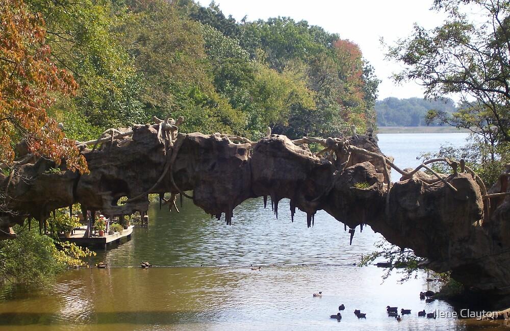 Autumn River Arch by Ilene Clayton