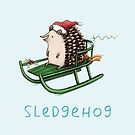 Sledgehog by Sophie Corrigan