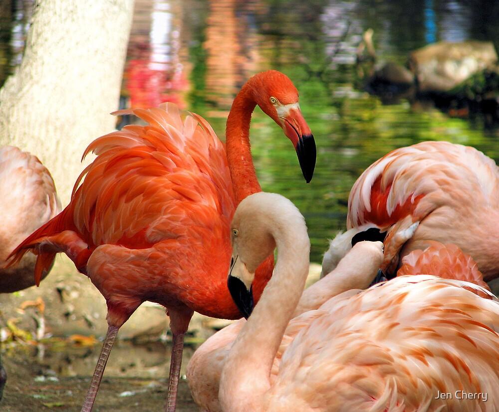 Flamingo Mingling by Jen Millard