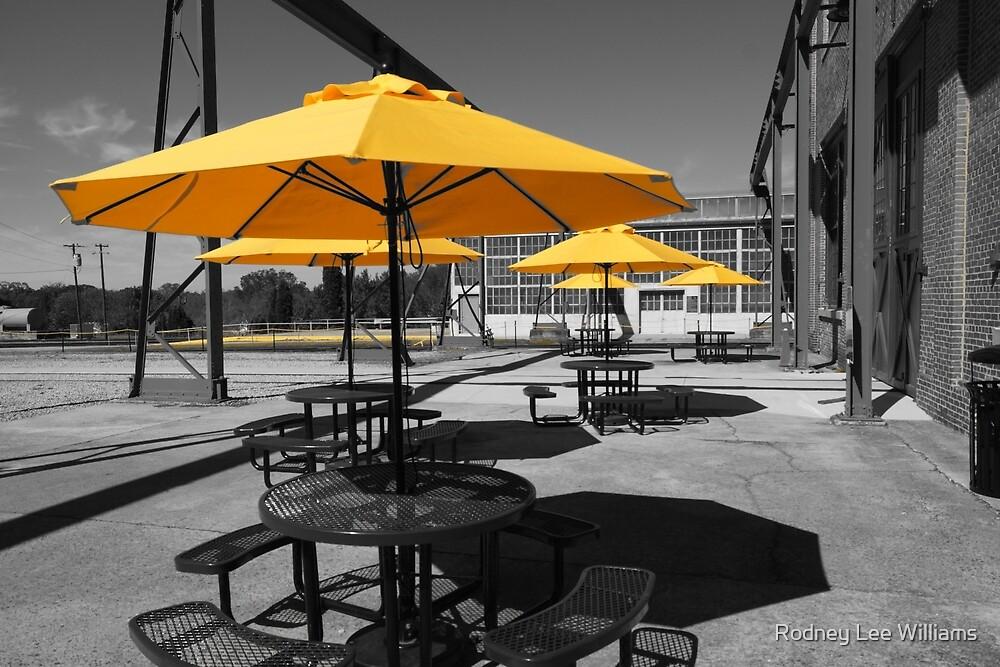 Yellow Umbrellas by Rodney Williams